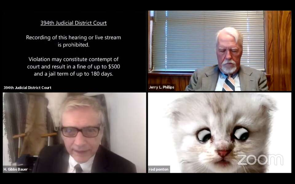 """""""I am not a Cat"""", says Lawyer to Judge"""